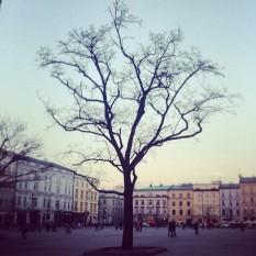 Krakow_juan